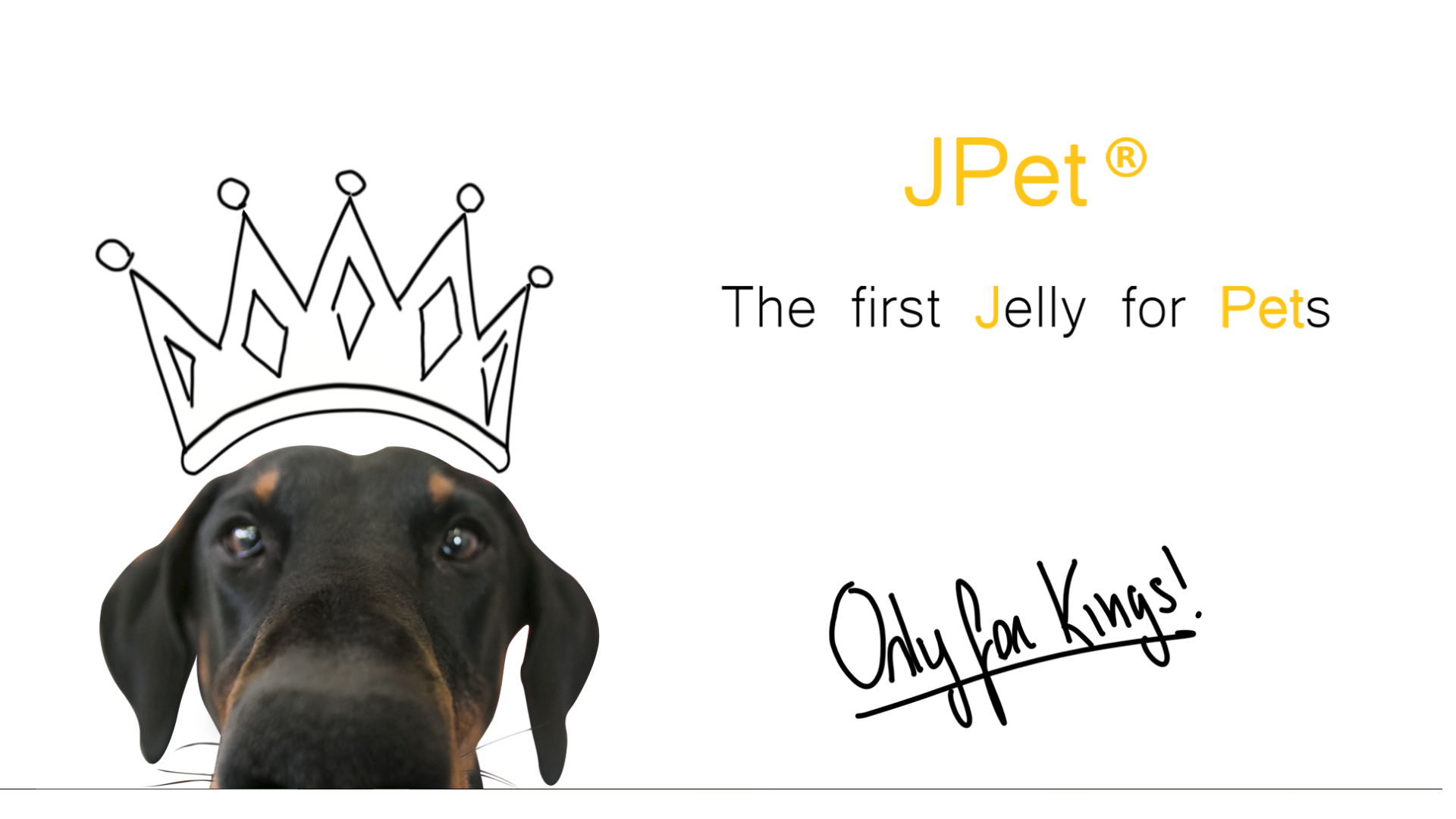 Jpet® -  The first Jelly for Pets